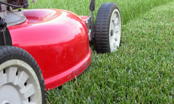 Lawn Care in Oshkosh WI Lawn Care Services in Oshkosh WI Quality Lawn Care in Oshkosh WI
